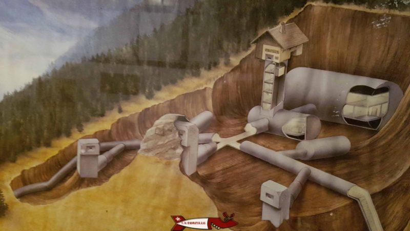 La structure du fort affichée à l'entrée. On voit les bunkers reliés entre-eux par des galeries, le chalet et différentes salles.