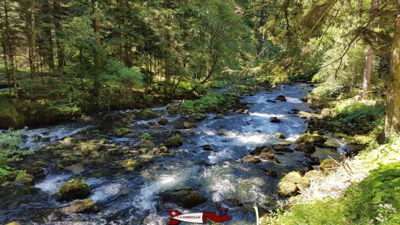 La rivière Orbe qui sort par les grottes de Vallorbe. L'eau provient du lac de Joux.