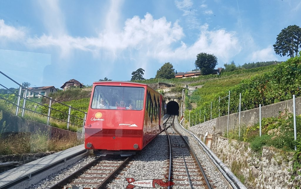 The Vevey-Mont-Pelerin train in the vineyard.