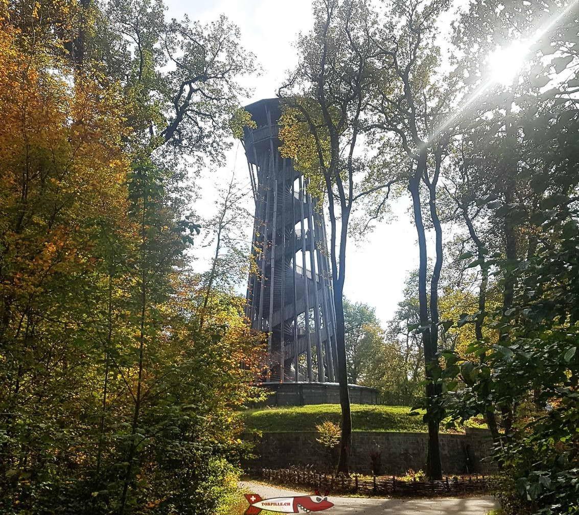 La tour de Sauvabelin permet de profiter gratuitement d'un joli paysage au dessus de la cime des arbres.