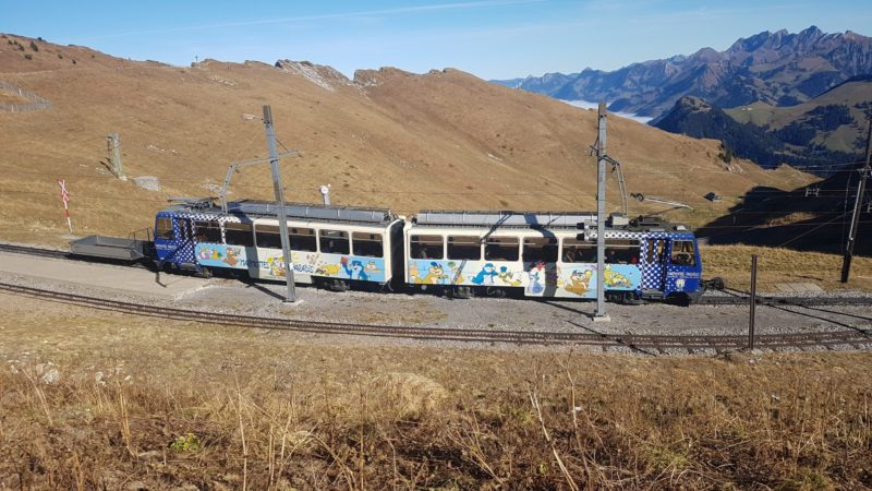 The Montreux-les Rochers de Naye train at the Rochers de Naye station.