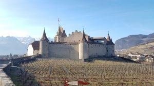 le château d'Aigle