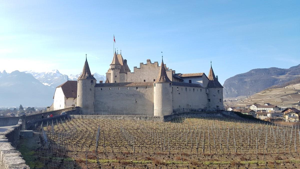 Le château d'Aigle au milieu du vignoble. Il a été sous le contrôle de Berne dès la fin des guerres de Bourgogne jusqu'à l'indépendance vaudoise.