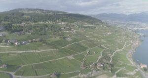 Vue sur le vignoble et l'antenne du Mont-Pelerin