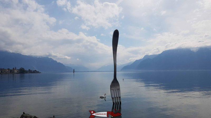 Le fourchette tout proche du rivage et de l'alimentarium