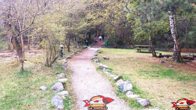 Le chemin de la cascade avec un coin barbecue sympathique sur la droite.