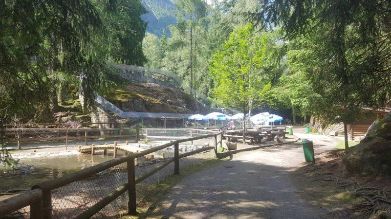 Tables de picnic au zoo et piscine des marécottes