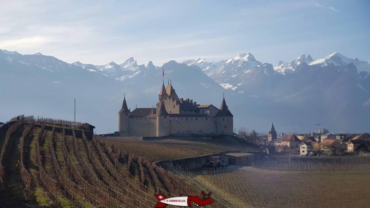 Le château d'Aigle au milieu des vignes.
