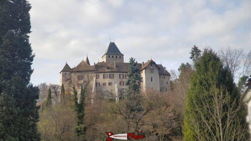 Le château de Blonay.