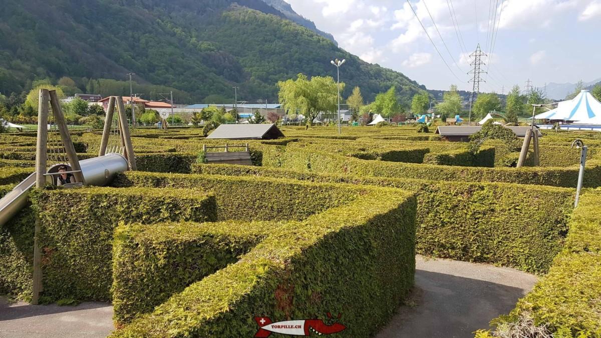 La labyrinthe en thuyas d'Evionnaz