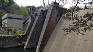Le barrage de l'Arboretum d'Aubonne
