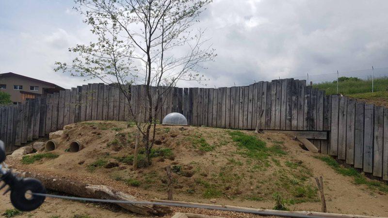 Un enclos dans lequel le visiteur peut accéder au milieu dans une bulle.