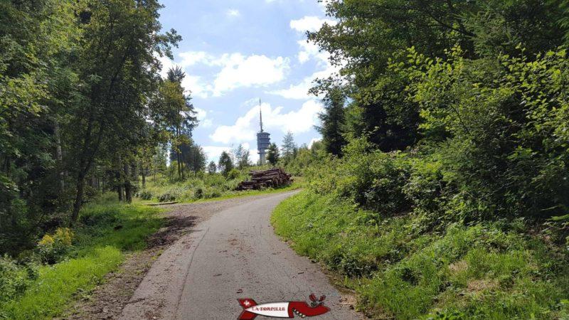Le chemin d'accès interdit aux voitures pour accéder à l'antenne du Mont-Gibloux.