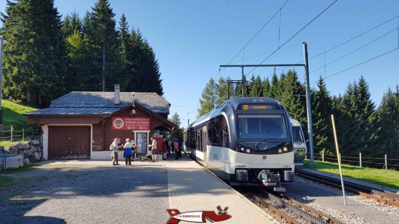 La train en gare des Pléiades.