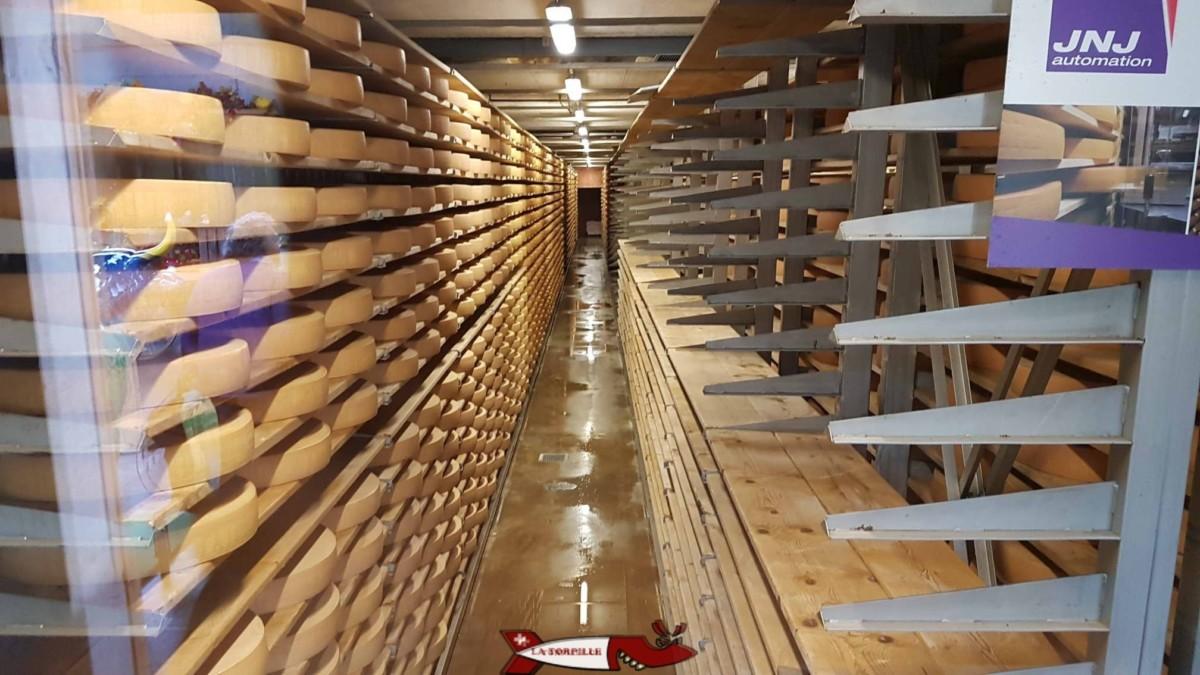 Des meules de Gruyère stockées à la Maison du Gruyère.