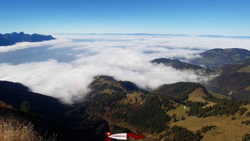 Une vue depuis le sommet des Rochers-de-Naye.