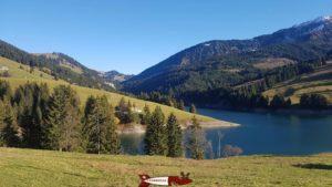 La vue sur les paturages autour du barrage de l'hongrin
