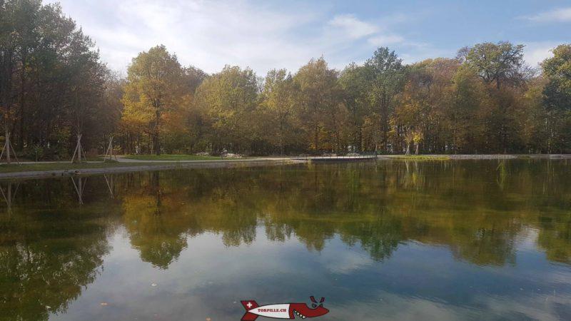 Le lac de Sauvabelin.