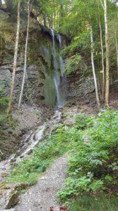La cascade le long du chemin forestier aux Gorges de la Jogne