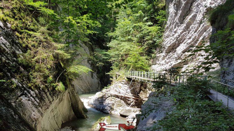 Les gorges de la Jogne font partie des plus belles gorges de Suisse Romande