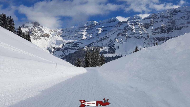 The track with the Diablerets massif as a backdrop.