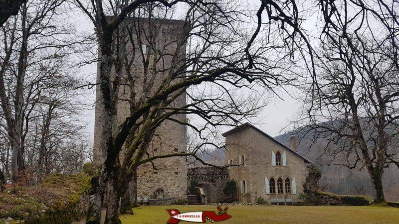 Le donjon du château des Clées et les ruines des remparts.