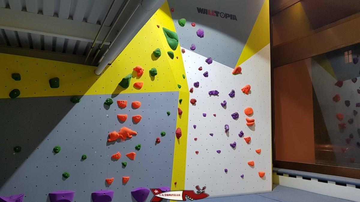 Voies de couleurs différentes à Totem escalade Vevey - Salles de grimpe et accrobranches de Suisse Romande