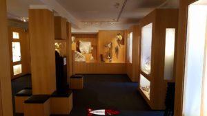 Le premier étage du musée romain d'avenches