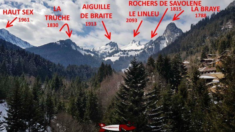 Depuis la passerelle de torgon, on peut observer les alpes valaisannes qui font la frontière avec la France .
