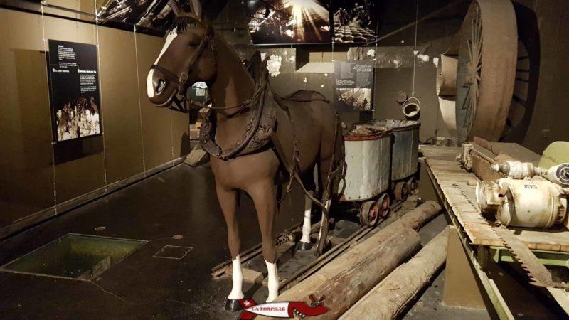 Un cheval tirant deux wagonnets remplis de minerai aux mines d'asphalte de travers