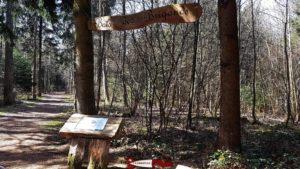L'entrée du bois des brigands à côté du parking - donjon du bois des brigands
