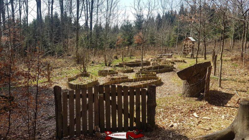 l'arboretum du bois des brigands