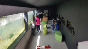 Le long couloir avec les aquariums provenant d'un canal de dérivation de la rivière le Boiron à la maison de la rivière
