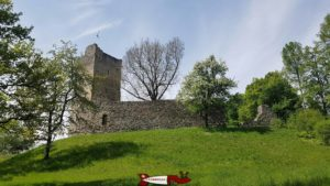 le château de Saint-Martin du Chêne