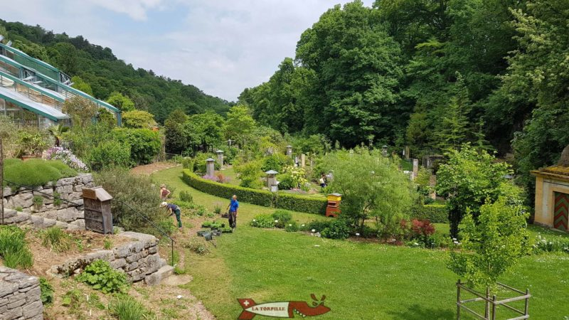 Espaces du jardin botanique de Neuchâtel