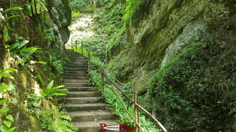 Des escaliers le long des gorges du chauderon