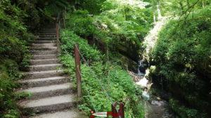 Les gorges du Chauderon font partie des plus belles gorges de Suisse Romande