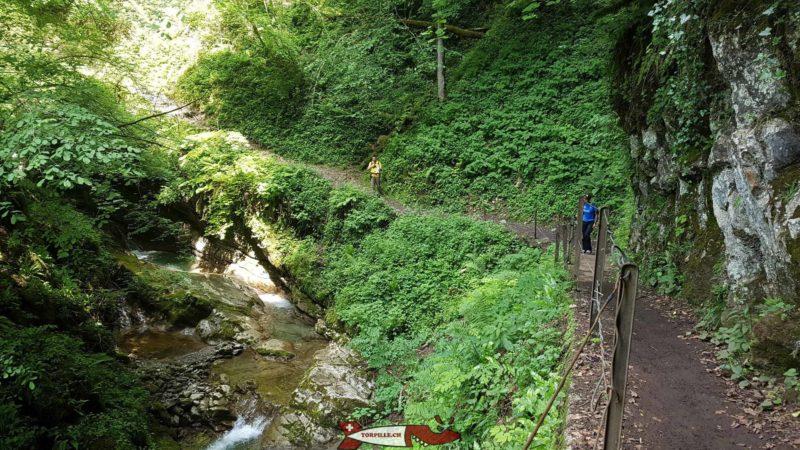 Le sentier le long des gorges du Chauderon.