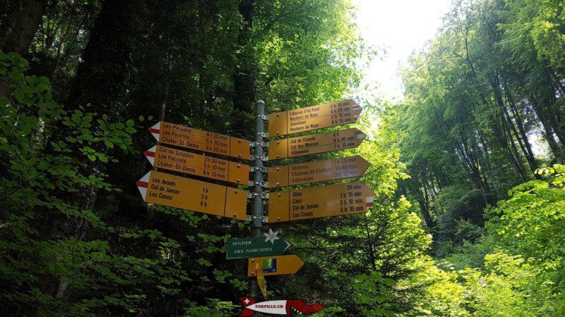 les panneaux indicateurs en haut des gorges du chauderon
