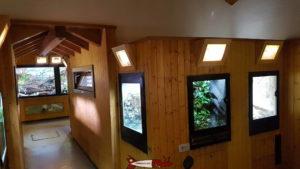 Petits terrariums contenant divers petits animaux au vivarium du zoo du petit-chateau