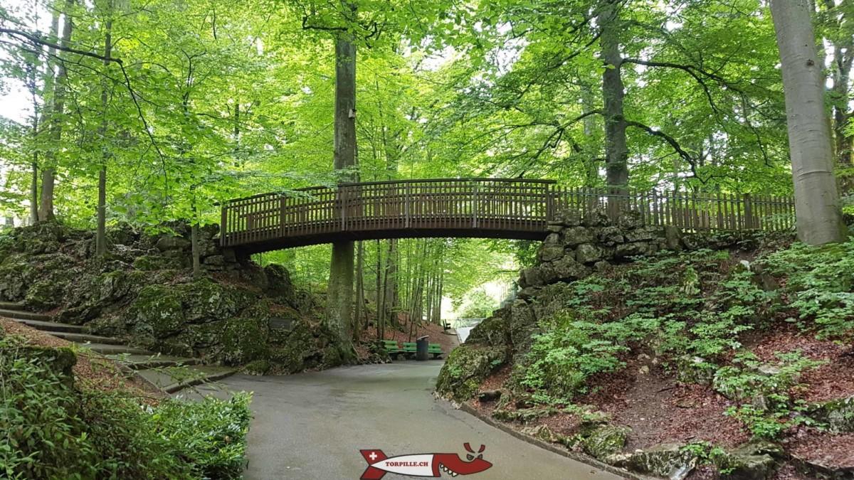 Le pont en bois en entrant dans le zoo du Petit-Château.