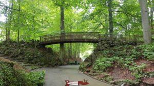 L'entrée du vivarium avec le pont en bois.