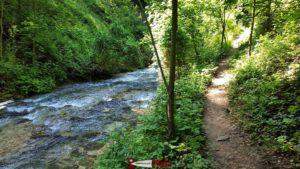 le parcours des gorges du nozon le long de la rivière