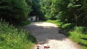 L'accès au canal d'entreroches depuis éclepens pic nic