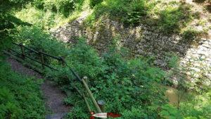 Le chemin forestier le long du canal d'Entreroches.