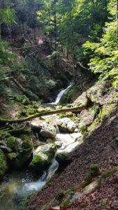 Des cascades et des marmites glaciaires formées par le frottement de grains de sable entrainés dans le courant circulaire de l'eau dans les gorges de Covatannaz