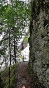 Le sentier des gorges de Covatannaz prends rapidement de la hauteur par rapport à la rivière avec d'impressionnantes parois rocheuses