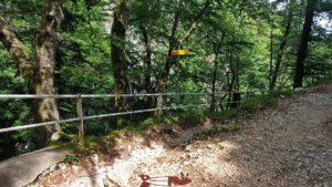 le sentier en pente raide dans les gorges de covatannaz