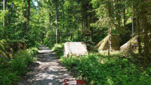 le chemin forestier au début du parcours des gorges de la Poëta-Raisse