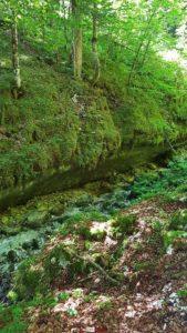 Le lit du ruisseau du breuil sur le parcours des gorges de la Poëta-Raisse
